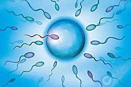 """久备不孕!!可能是""""抗精子抗体""""惹的祸!"""