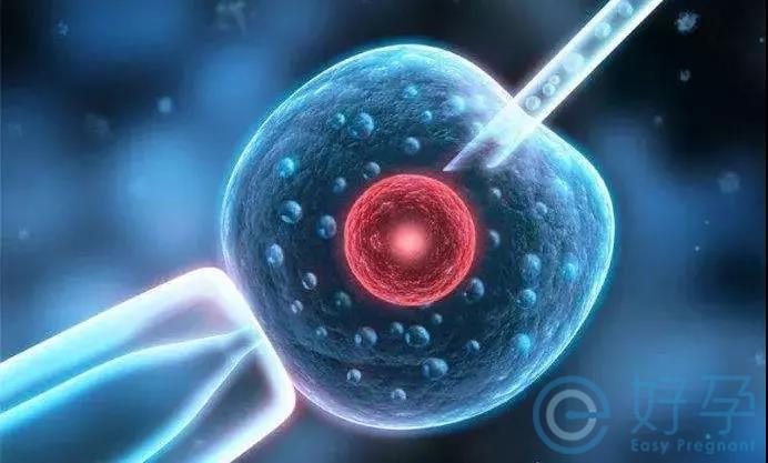 染色体易位-第三代试管婴儿技术