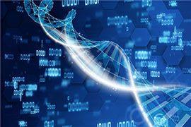 第三代试管婴儿技术-PGS与PGD区别