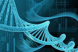 泰国第三代试管婴儿如何筛查单基因遗传病?