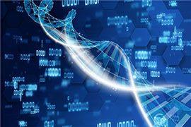 大龄生二胎-美国第三代试管婴儿技术