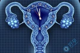 卵巢早衰怎么办?做第三代试管试管婴儿需要哪些费用?