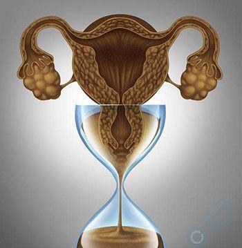 卵巢早衰-第三代试管婴儿费用-卵巢储备功能