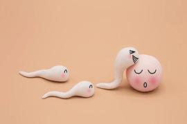 输卵管炎症美国试管婴儿的影响