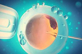 卵巢储备功能低做试管需要经过哪些流程?
