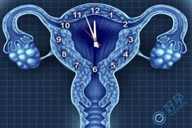 你了解 卵巢早衰做试管婴儿要经过哪些过程吗