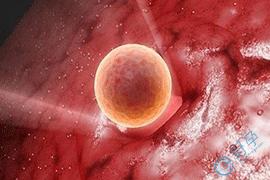 子宫内膜增厚如何做试管?试管流程详细介绍