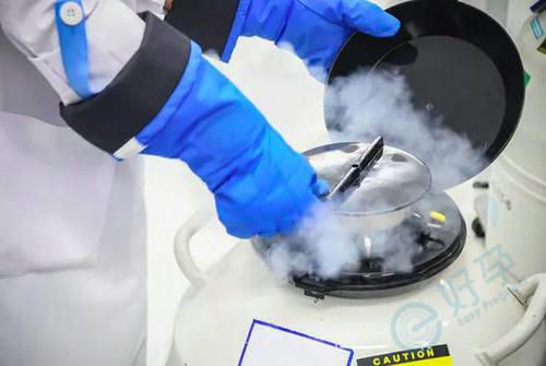 液态氮冷冻卵子.jpg