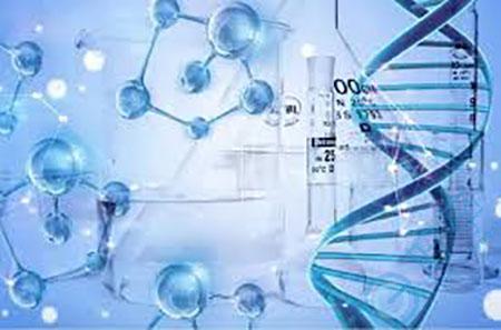 美国试管冻胚移植成功率是多少?安全性有保障吗?