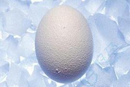 试管婴儿冻卵和冻胚的区别在哪里?哪个更易成功?