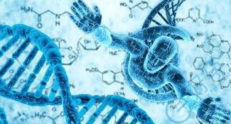 染色体易位,赴美做第三代试管婴儿的成功率高吗?