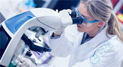 囊胚培育和基因检测