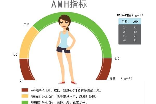 做试管婴儿为什么要检查AMH值