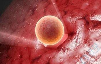 AMH高低与受孕能力