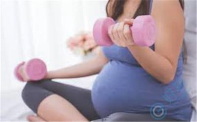 试管婴儿移植成功后如何保胎很关键