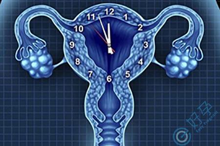 卵巢早衰去做试管婴儿