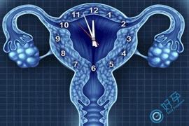 卵巢早衰去做试管婴儿,一般经过几次后才能成功好孕?