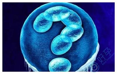 胚胎质量不好是由染色体异常导致的吗?