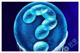 E好孕:胚胎质量不好是由染色体异常导致的吗?