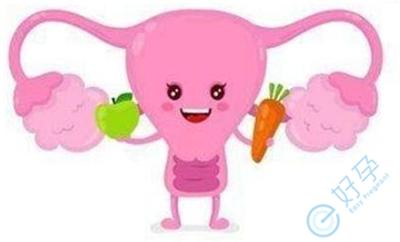 保护子宫内膜的5个好方法分享
