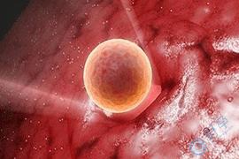泰国试管婴儿胚胎移植后的4个常见症状