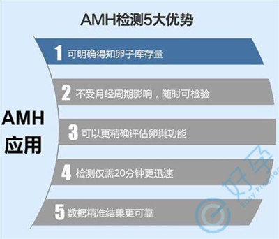 检测AMH值可预测泰国试管婴儿成功率