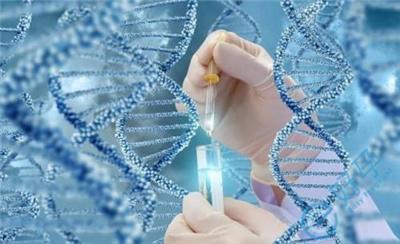 41岁做泰国试管婴儿,胚胎能通过筛查的有几个?