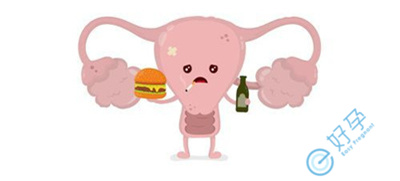 泰国试管婴儿:子宫内膜容受性差的原因是什么?