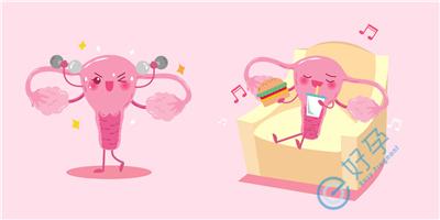泰国试管婴儿备孕如何调节好生物钟?