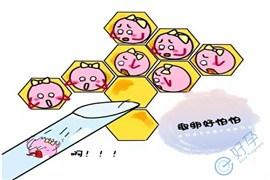 做试管婴儿促排会不会导致卵巢早衰?
