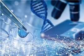 带你破解染色体异常的胚胎如何提高试管成功率
