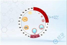 促排期间卵泡长得慢怎么解决?
