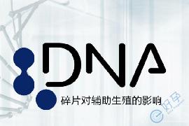 男性精子DNA碎片率高,做试管婴儿如何提高成功率?