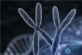 Y染色体异常,还能通过试管生下一代吗?