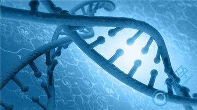 夫妻染色体均正常,胎儿染色体却异常是怎么回事?