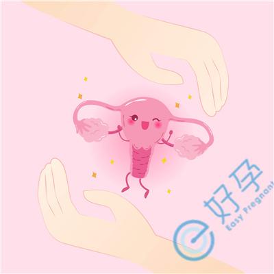 试管婴儿移植前提高着床能力,移植后营造着床环境