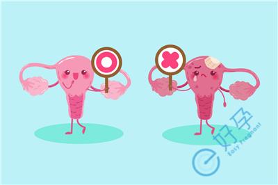 做试管如何为将移植的胚胎创造良好的宫腔环境?